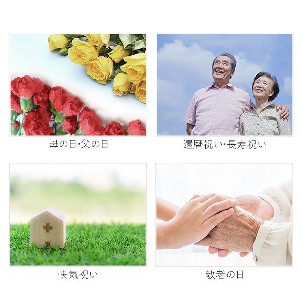 プレゼント ギフト 本高砂屋 エコルセ|wochigochi|05