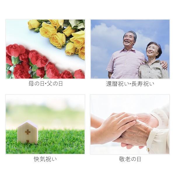 プレゼント ギフト 百菓匠 まえだ おかき詰合せ 大切なあなたへ感謝の気持ち|wochigochi|04