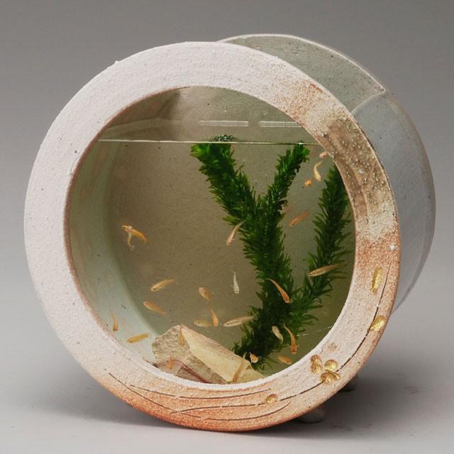 めだか鉢 陶器の水槽 陶器水槽 信楽焼の白金彩丸水槽(小)