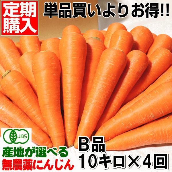 無農薬人参 ジュース用に最適 定期購入 産地が選べる無農薬にんじんB品10キロ×4回 計40キロ 送料無料 訳あり