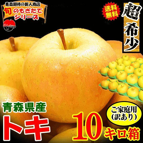 クーポンで200円引き!あすつく 送料無料 りんご 10kg箱 トキ ご家庭用 訳ありリンゴ 鮮度抜群 青森 リンゴ 10キロ箱 world-wand