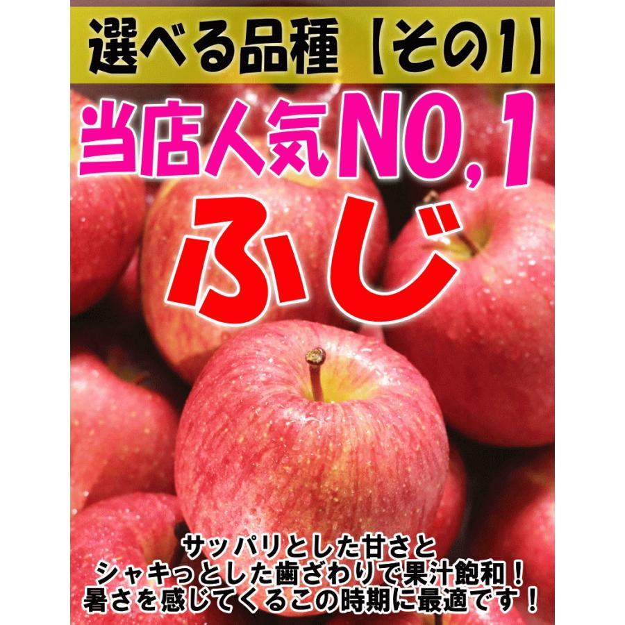 クーポンで200円引き!あすつく 送料無料 りんご 10kg箱 トキ ご家庭用 訳ありリンゴ 鮮度抜群 青森 リンゴ 10キロ箱 world-wand 02