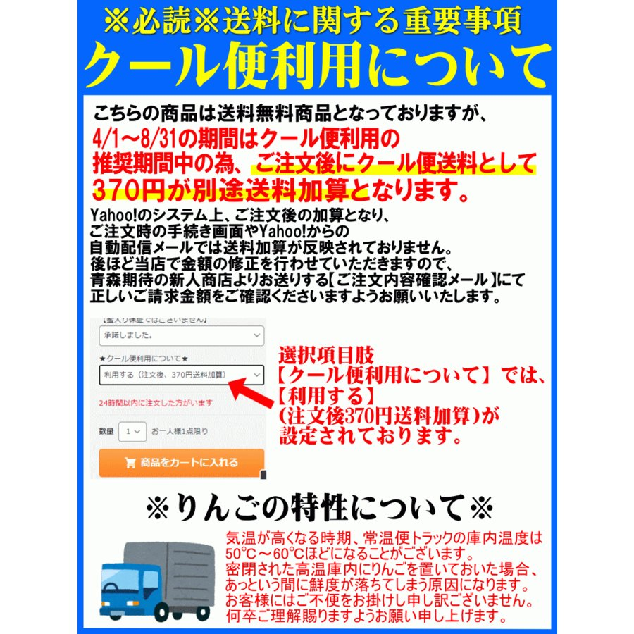 クーポンで200円引き!あすつく 送料無料 りんご 10kg箱 トキ ご家庭用 訳ありリンゴ 鮮度抜群 青森 リンゴ 10キロ箱 world-wand 07