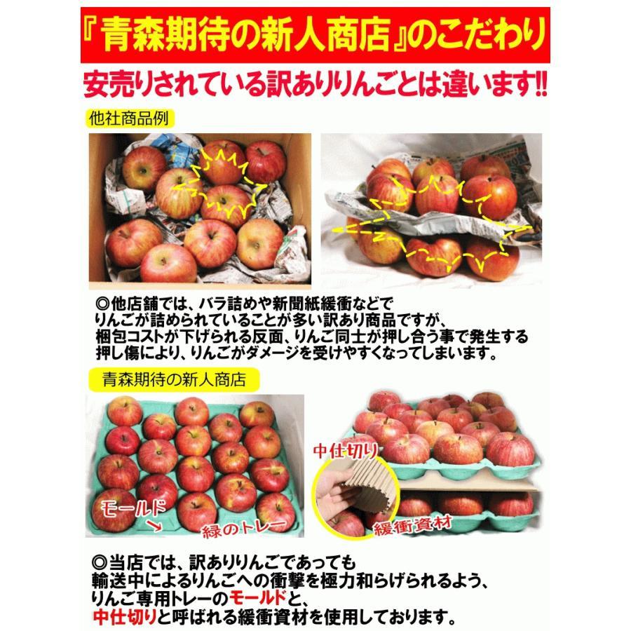 クーポンで200円引き!あすつく 送料無料 りんご 10kg箱 トキ ご家庭用 訳ありリンゴ 鮮度抜群 青森 リンゴ 10キロ箱 world-wand 09