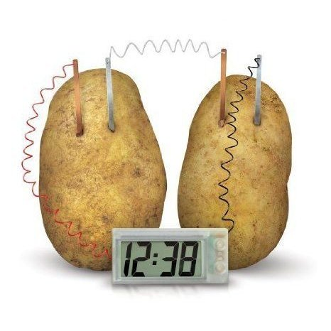 4M Potato Clock by Toy Smith TOY ドール 人形 フィギュア