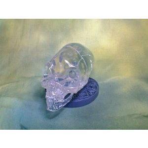 Indiana Jones (インディジョーンズ) Alien Crystal Skull, with Jungle Display Stand フィギュア おも
