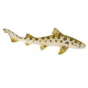 Safari Ltd Wild Safari Sea Life Leopard Shark