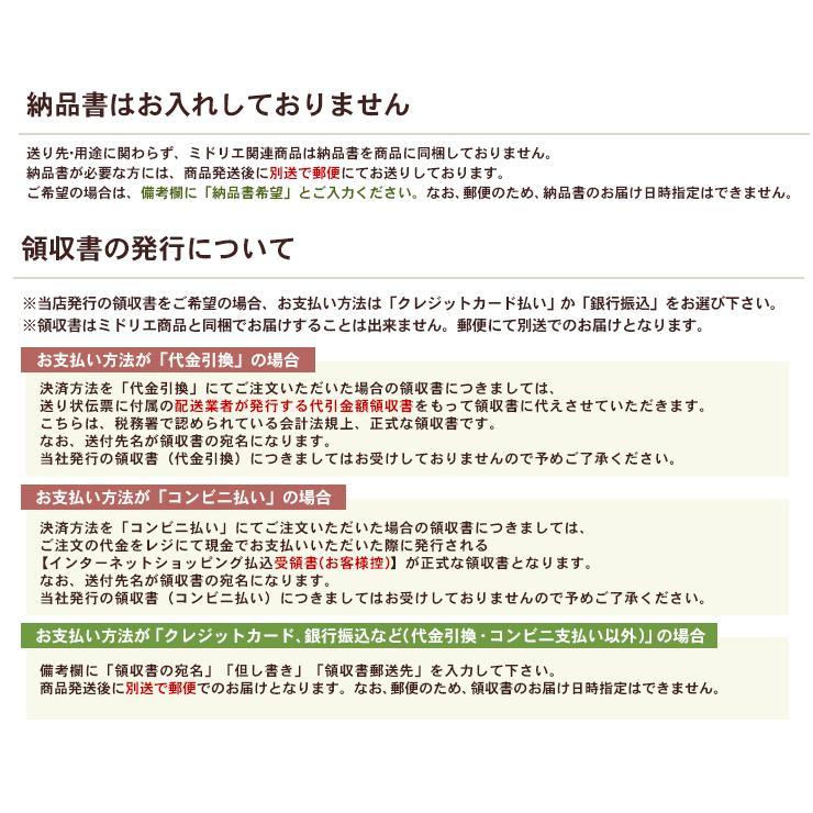 送料無料 壁掛け観葉植物 ミドリエ デザイン 「木目調フレーム 樹脂製」|worldgarden|07