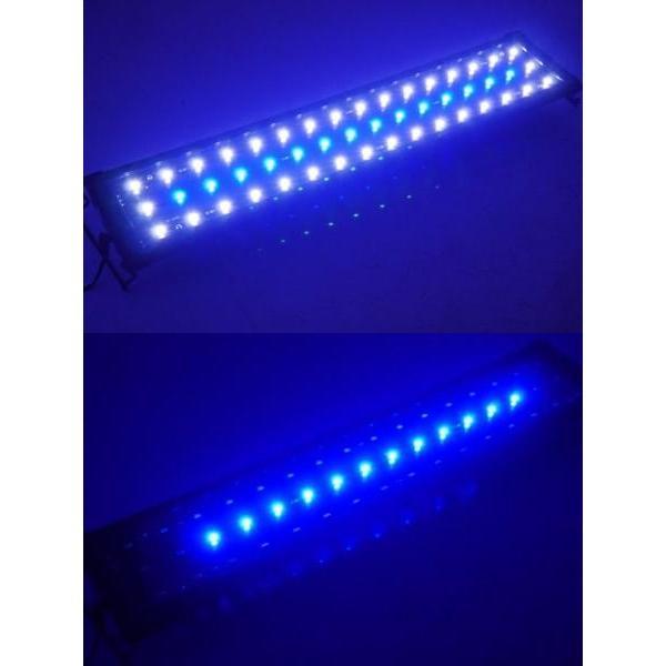 アクアリウムライト 水槽用照明 600/48発LED 60cm〜85cm 【QL-08】|worldnet|06