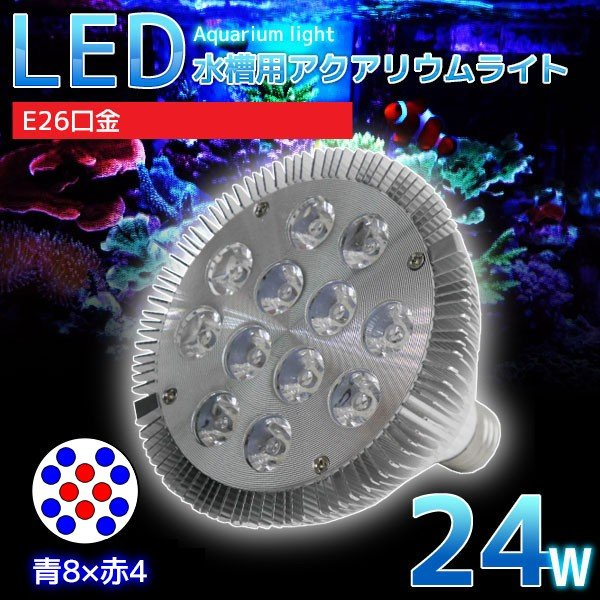 E26口金 24W 珊瑚 植物育成 水草用 水槽用 LEDアクアリウムスポットライト 青8灯×赤4灯 【QL-02】