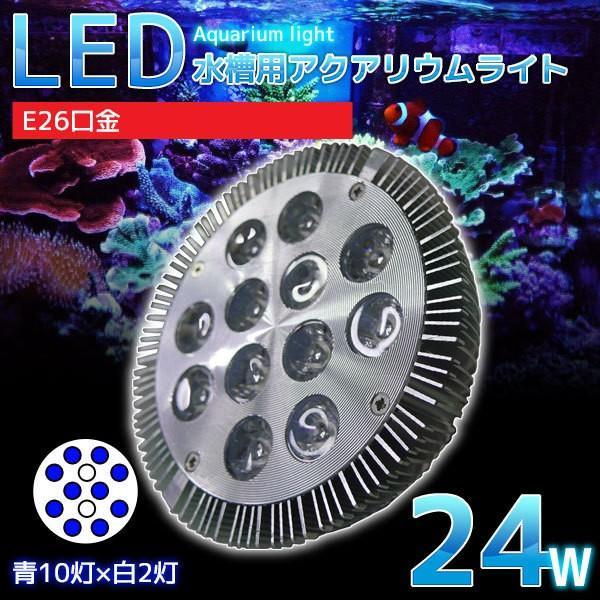 E26口金 24W 珊瑚 植物育成 水草用 水槽用 LEDアクアリウムスポットライト 青10灯×白2灯【QL-13】