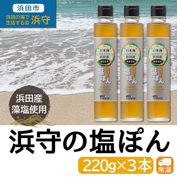 浜守の塩ぽん 220g×3本セット 調味料 島根県 浜田市