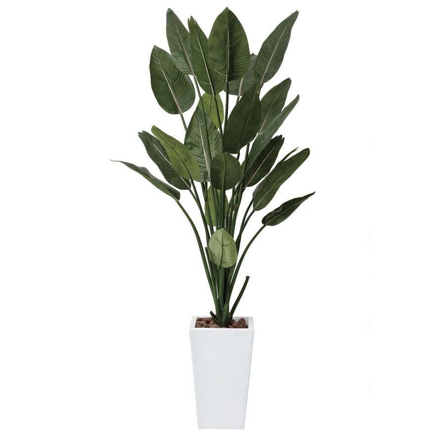 送料無料ポイント10倍《アートグリーン》《人工観葉植物》光触媒 光の楽園 ストレチアW1.6