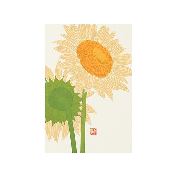 レター midori ミドリ 紙 シリーズ 88556006 夏レター ●日本正規品● ポストカード556 人気海外一番 ひまわり柄A