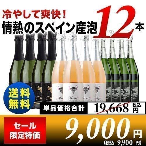 受注生産品 7 15セット内容変更 スパークリングワインセット 冷やして美味しい 驚きの価格が実現 set 送料無料 情熱のスペイン産スパークリング12本セット wine