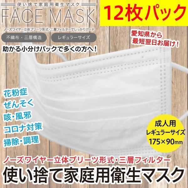 マスク12枚パック 不織布三層構造 家庭用使い捨て衛生マスク 飛沫対策 感染予防 花粉症/レギュラーサイズ 白色 /メール便OK 愛知県より迅速発送|wtpkikaku