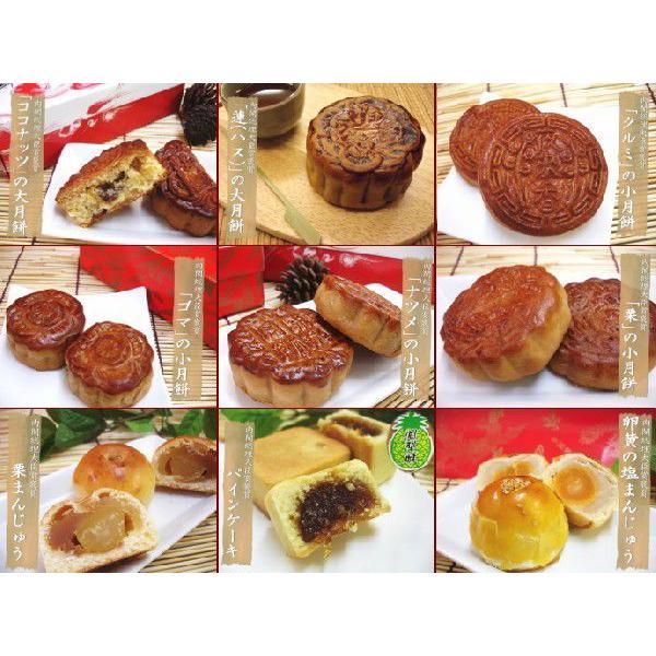 9種10個の月餅セット 送料無料 ココナッツ 鳳梨酥もセット 蛋黄酥 通常便なら送料無料 蓮の大月餅 超特価