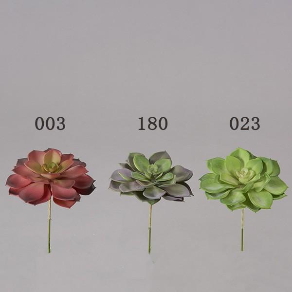 《 造花 グリーン 多肉植物 とりよせ品 Seasonal Wrap入荷 通常便なら送料無料 エケベリア 》 花びし