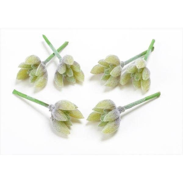《 時間指定不可 造花 グリーン 多肉植物 》 1袋6本入り 花びし とりよせ品 卓抜 パープル ☆ミニサクレントピック