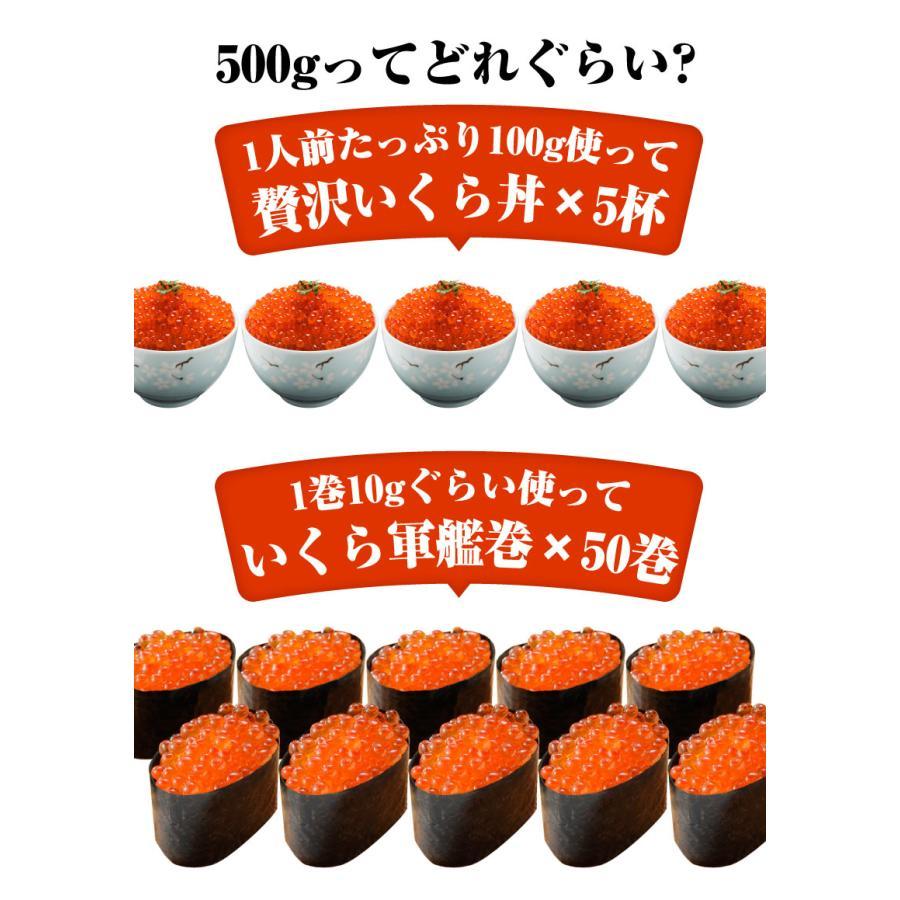 寿司屋のいくら醤油漬け いくら  500g 北海道標津町加工|y-kanazawamaimon|05