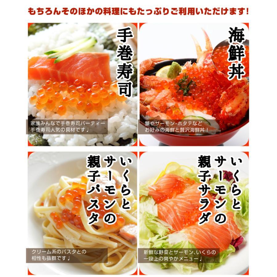 寿司屋のいくら醤油漬け いくら  500g 北海道標津町加工|y-kanazawamaimon|06