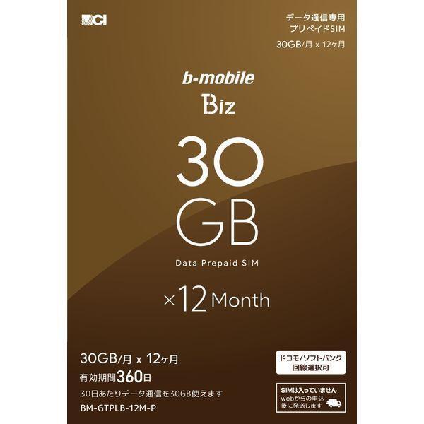 日本通信 b-mobile Biz 申込パッケージ BM-GTPLB-12M-P 1個(直送品)