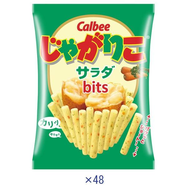 カルビー 永遠の定番 超定番 じゃがりこサラダ 1箱 16g×48袋入