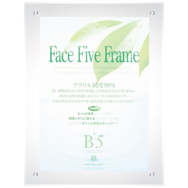 セール品 専門店 アートプリントジャパン フェイスファイブフレーム B5 クリア 外寸:307×232mm