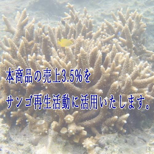 沖縄サンゴ焙煎コーヒー 35COFFEE(O.L.T SPECIAL)200g(粉)|y-sansei-shop|05