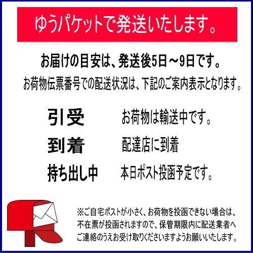 スッパイマンの甘梅一番 たねなし17g 6個までメール便可|y-sansei-shop|03