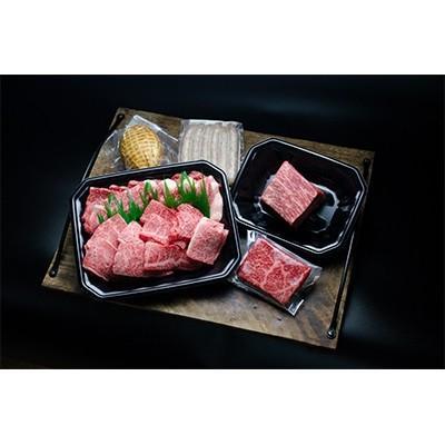 北栄町 ふるさと納税 【特選】鳥取和牛と鳥取のお肉のBBQセット