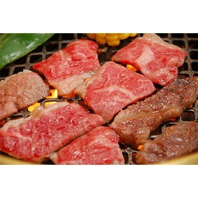 荒尾市 ふるさと納税 くまもとあか牛(GI) 焼き肉用 500g