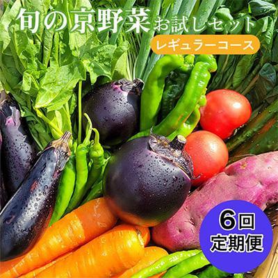 亀岡市 ふるさと納税 旬の京野菜 特選 毎月お届けレギュラーコース(全6回)