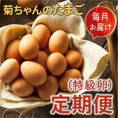 南九州市 ふるさと納税 【全12回】菊ちゃんのたまご(特級卵)定期便