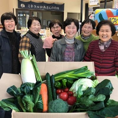 西会津町 ふるさと納税 西会津ミネラル野菜セット定期便(小) 10回