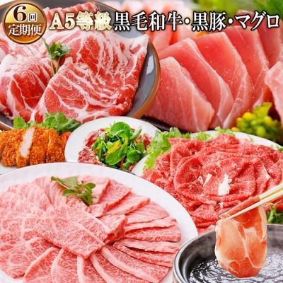 枕崎市 ふるさと納税 定期便(6ケ月)A5等級黒毛和牛&黒豚·マグロ