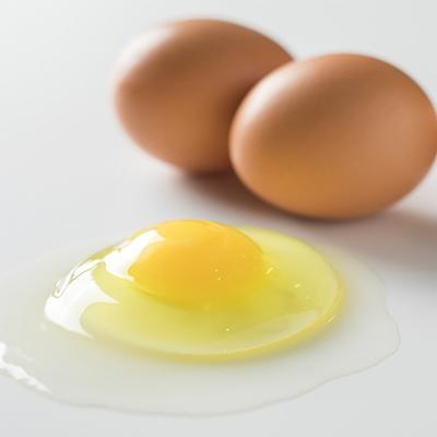 厚真町 ふるさと納税 2021年4月発送開始『定期便』小林農園の平飼い卵(有精卵)25個【S-030】全12回