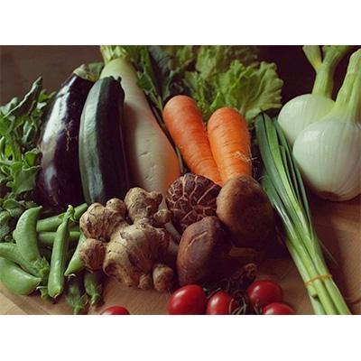 土佐市 ふるさと納税 2021年3月発送開始『定期便』【土佐野菜】旬の野菜と栽培期間中農薬不使用の生姜付き 全12回