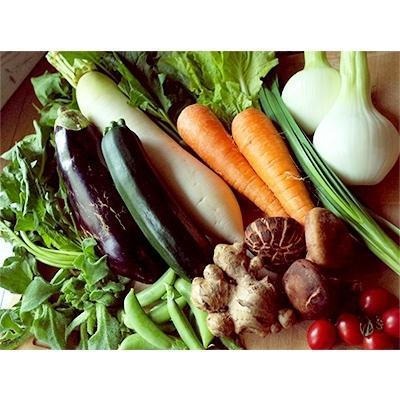 南国市 ふるさと納税 2021年4月発送開始『定期便』旬の野菜と栽培期間中農薬不使用の生姜付き:全6回