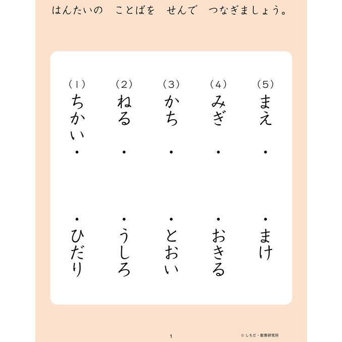 七田式・知力ドリル 4歳 5歳 ちえ プリント|y-silverback|02