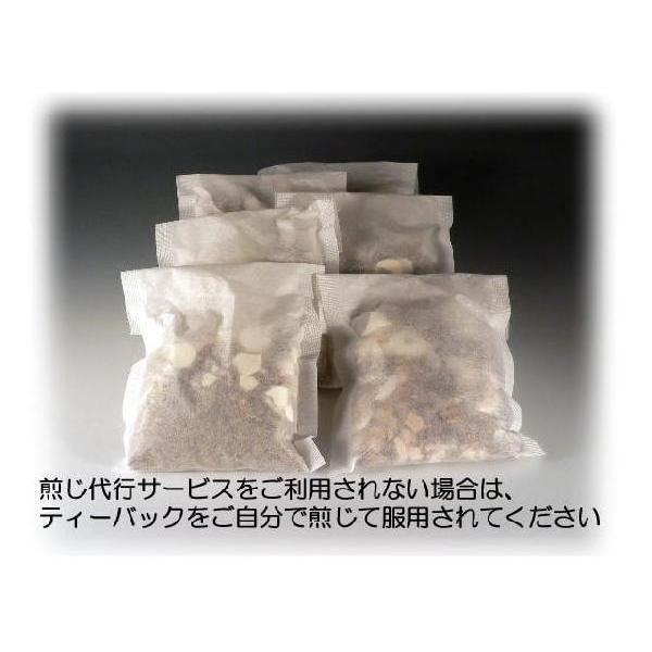 まおうとう 麻黄湯    レトルトパック入り煎じ薬 医薬品第2類|yakusen-in|02