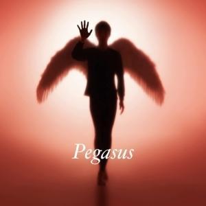 CD 布袋寅泰 Pegasus 贈物 安値 MAXISG+2CD 初回生産限定盤