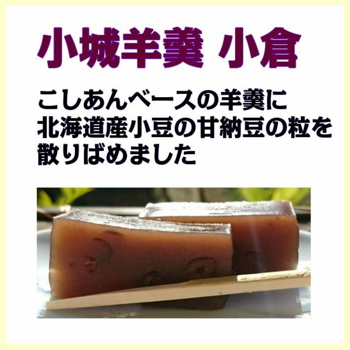 小城羊羹 食べ比べセット 【化粧箱入り】 ギフト 羊羹 ようかん|yamadarouho|04