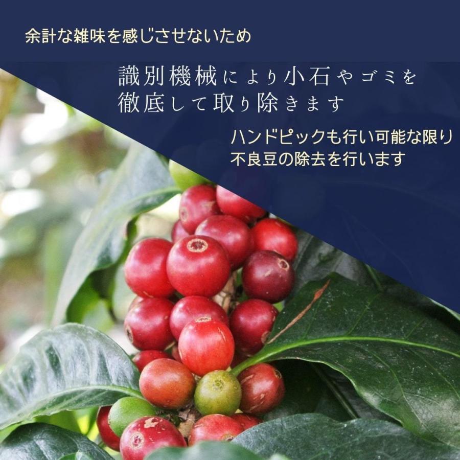 送料無料 エチオピア モカ ゲイシャ 中浅煎り 300g 自家焙煎珈琲|yamafuku-coffee|03