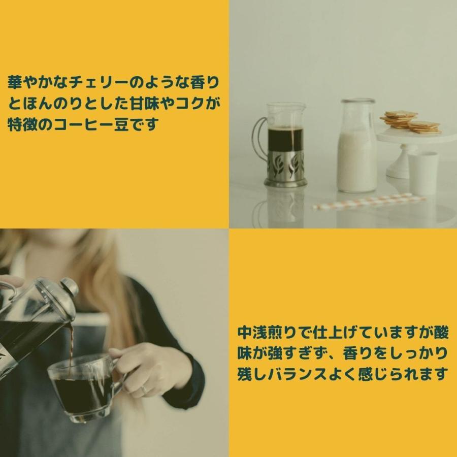 エチオピア モカ ゲイシャ 中浅煎り 150g 自家焙煎珈琲|yamafuku-coffee|02