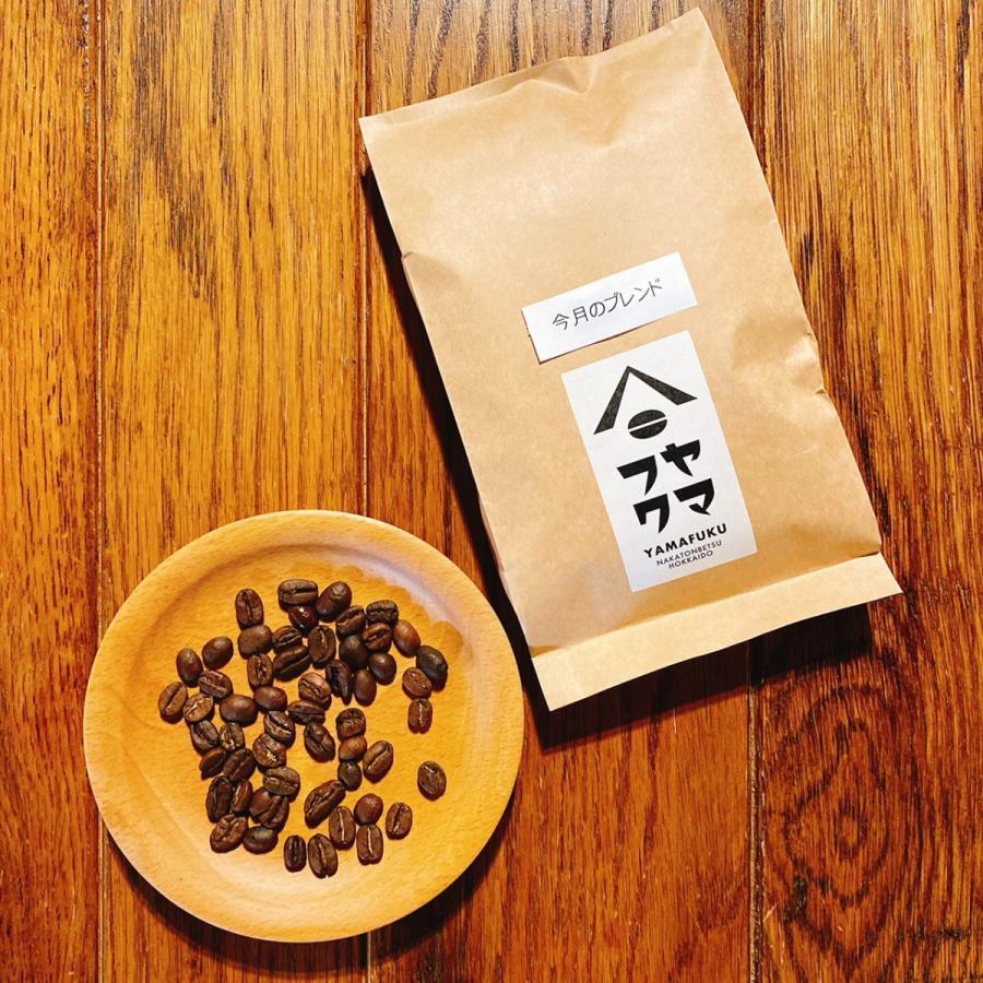 ゲイシャも選べる! 合計300g どれでも選べるお得な150g2袋セット 自家焙煎珈琲 送料無料|yamafuku-coffee|11