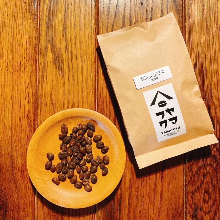ゲイシャも選べる! 合計300g どれでも選べるお得な150g2袋セット 自家焙煎珈琲 送料無料|yamafuku-coffee|12