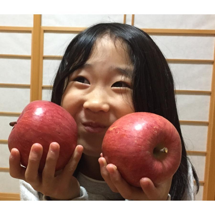山形県産 サンふじ ご家庭用 バラ詰め 10kg|yamagata-fc|03