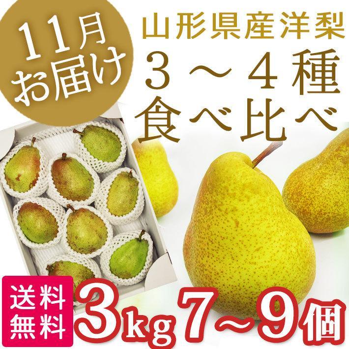 フルーツ 11月、12月お届け洋梨 西洋梨 3-4種類 食べ比べセット 3kg 7-9玉前後 山形県産 送料無料 生産者直送のため同梱不可 yamagatamaru