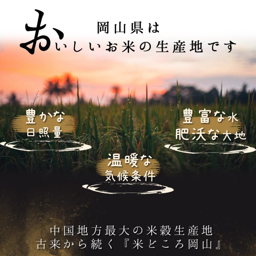 米 令和3年 新米 岡山県産 特A米 きぬむすめ 5kg 1袋 お米 キヌムスメ 5キロ 一等米 送料無料 安い|yamamotoyasuosaketen|03